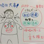 呼吸の下手な人は、人生を1/8損してる!