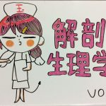解剖生理学の入門用 Vol1